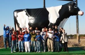 Big Cow Image